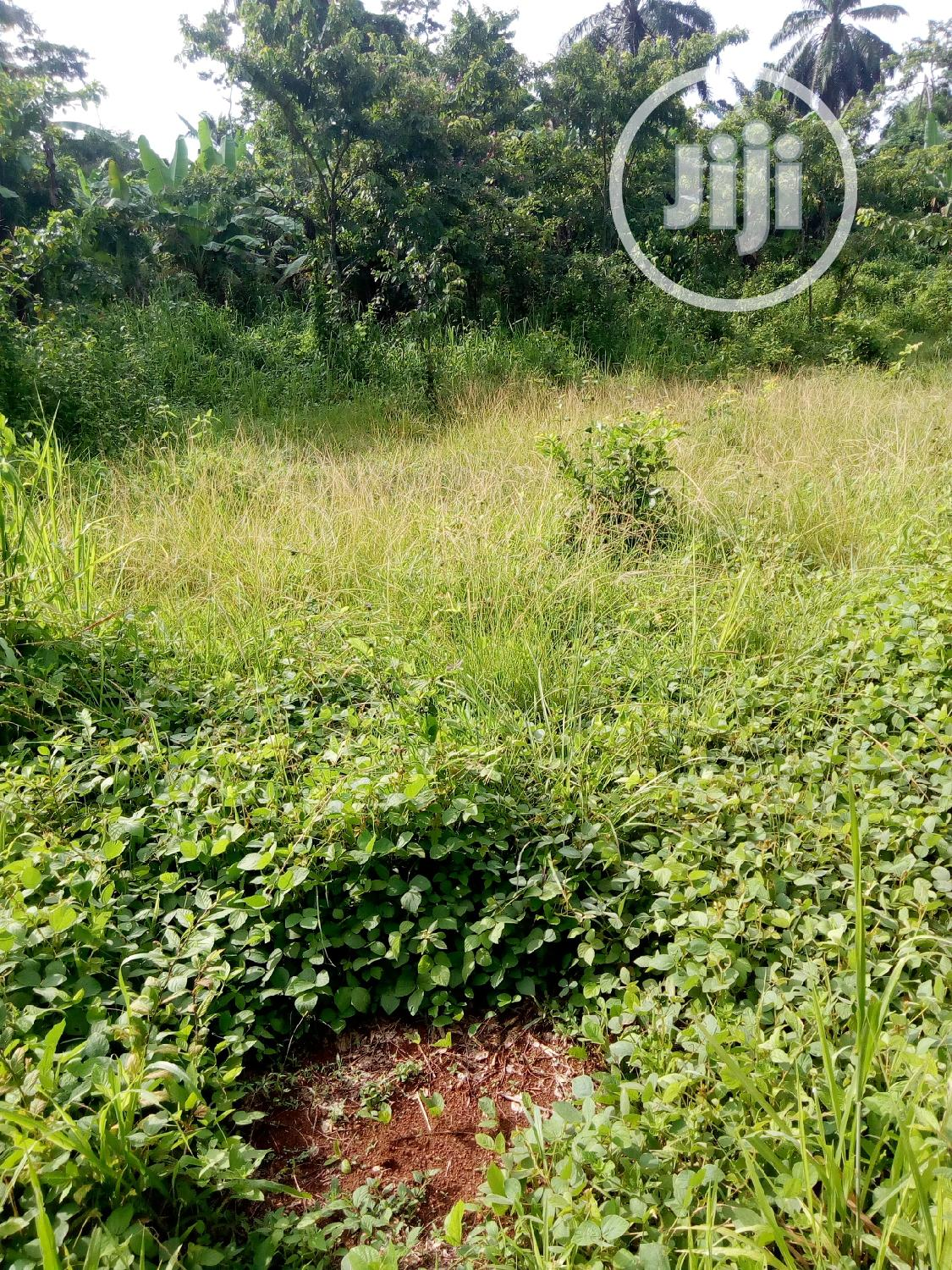 4 Plot Of Land For Sale | Land & Plots For Sale for sale in Akure, Ondo State, Nigeria