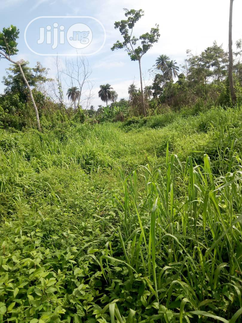 4 Plots Of Land For Sale At ONDO Road Besides Olopatodi Woli AKURE