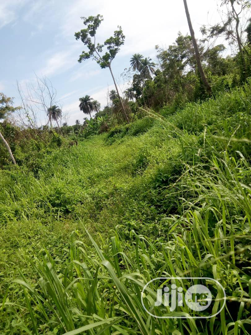 4 Plots Of Land For Sale At ONDO Road Besides Olopatodi Woli AKURE | Land & Plots For Sale for sale in Akure, Ondo State, Nigeria