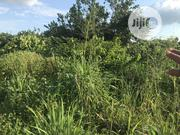 Empty Plots of Lands Located a Bit Off Avu/Port Harcourt Road Owerri | Land & Plots For Sale for sale in Imo State, Owerri