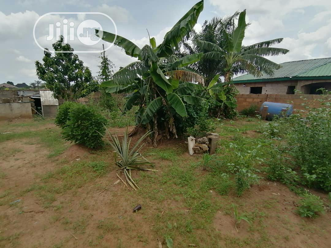 I Have Two Plot of Land to Sale