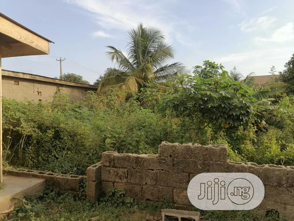 I Have Two Plot of Land to Sale   Land & Plots For Sale for sale in Ilaro, Ogun State, Nigeria