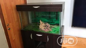 Aquarium Fish Tank And Powerful Filter | Fish for sale in Lagos State, Lekki