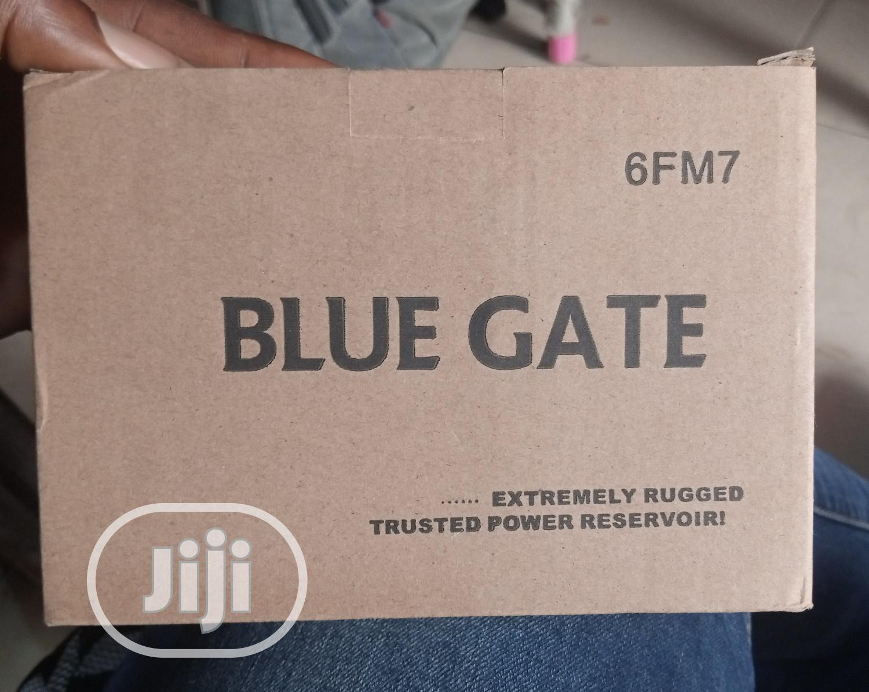Bluegate Ups Battery 12v 7ah