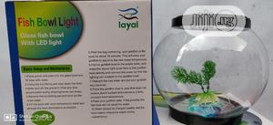 LED Fish Bowl | Fish for sale in Lagos State, Ikeja