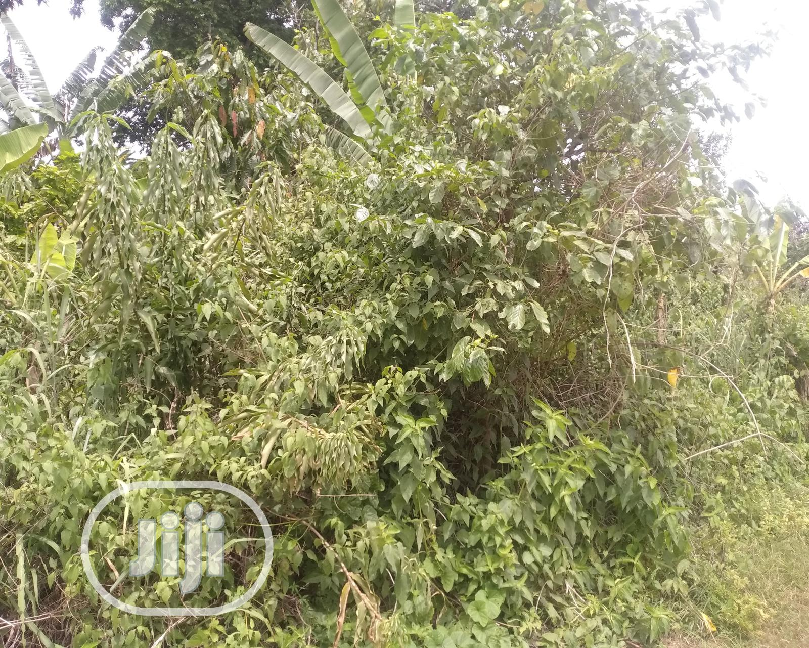 A Plot of Residential Land for Sale at Aule.