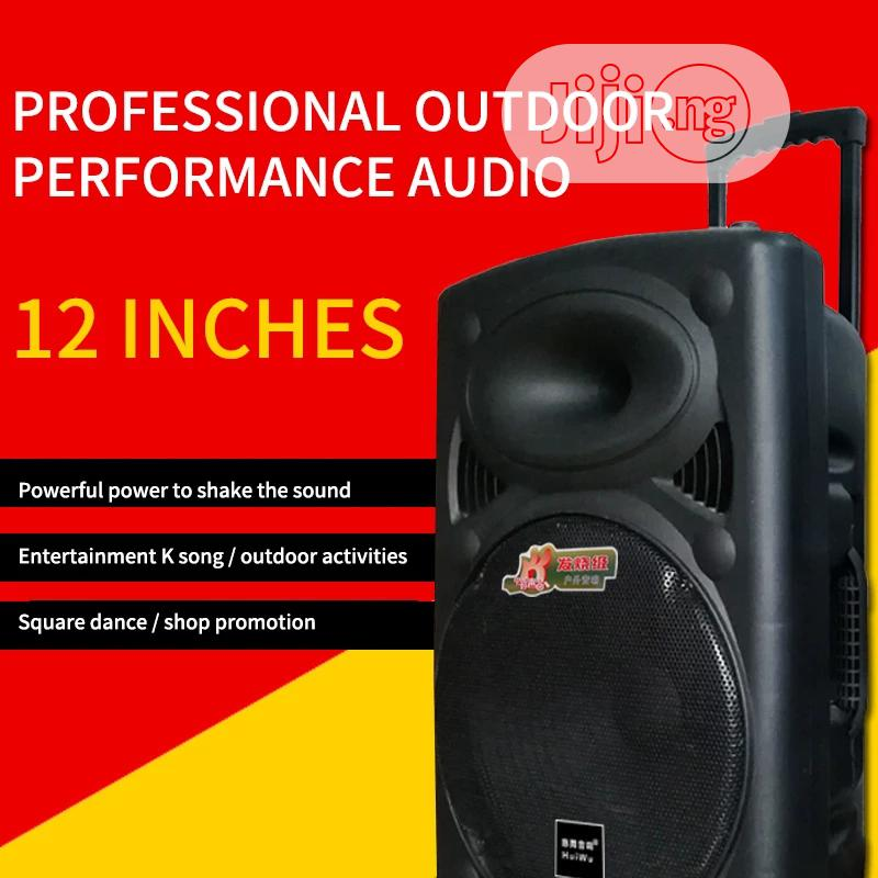 Rechargeable P. A With Bluetooth and USB Plus Two Wireless Mic   Audio & Music Equipment for sale in Victoria Island, Lagos State, Nigeria