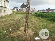 900SQM of Land for Sale at Startimes Estate Amuwo Odofin. | Land & Plots For Sale for sale in Lagos State, Amuwo-Odofin