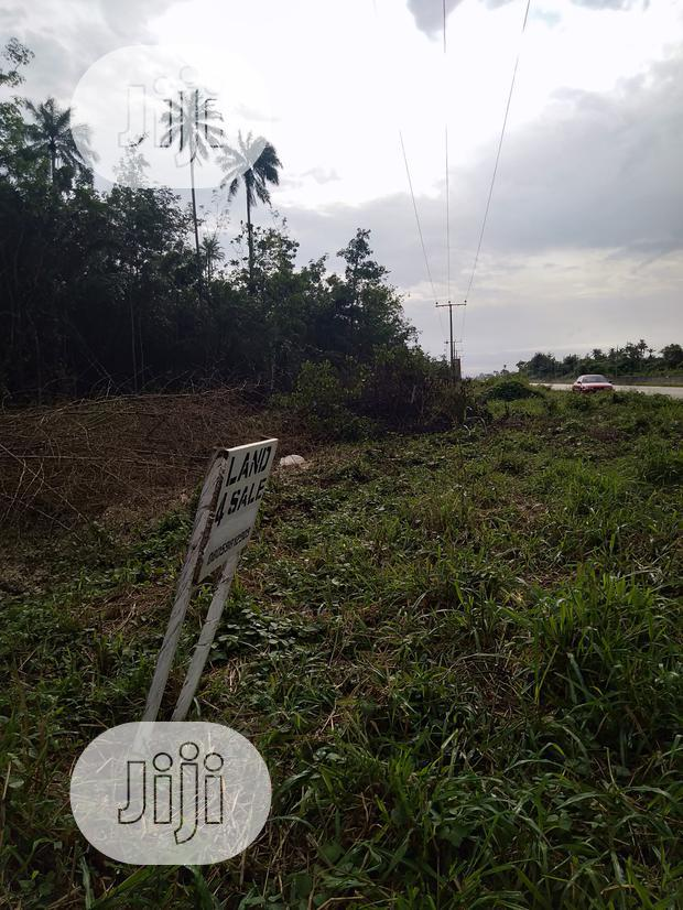 2 Acres of Land Along Ughelli-Warri Road for Sale