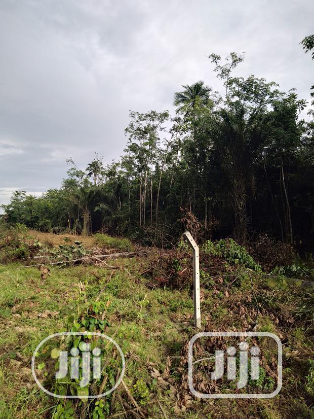 2 Acres of Land Along Ughelli-Warri Road for Sale | Land & Plots For Sale for sale in Ugheli, Delta State, Nigeria