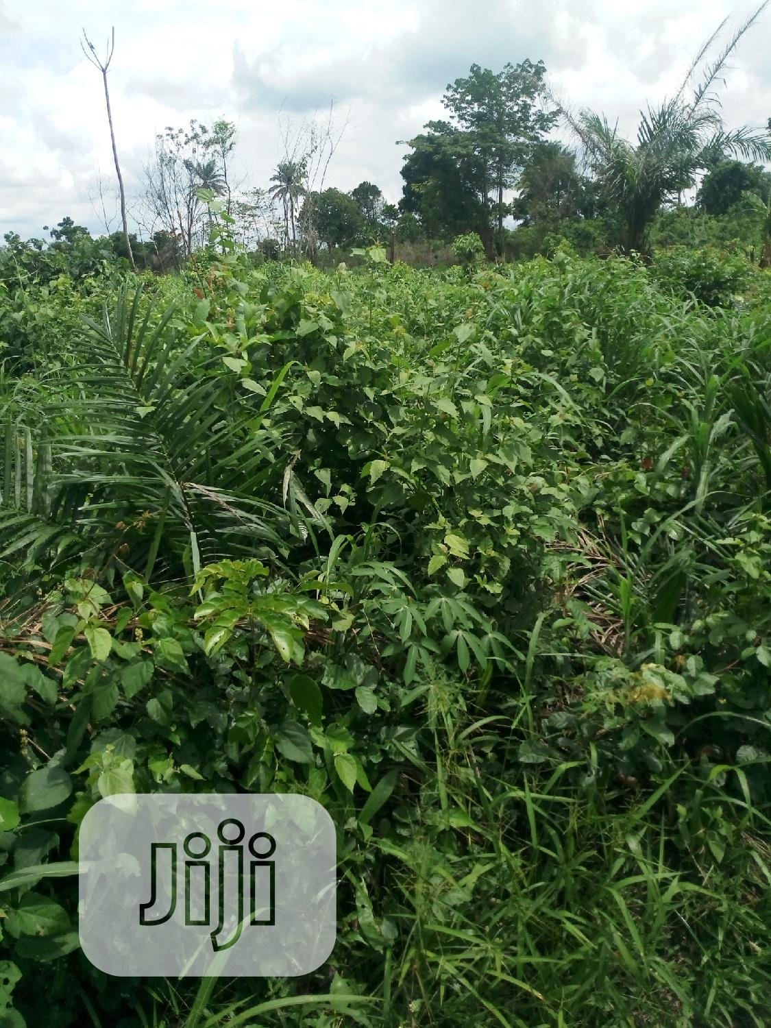 Land For Sale @ Atan Ogun State | Land & Plots For Sale for sale in Badagry, Lagos State, Nigeria