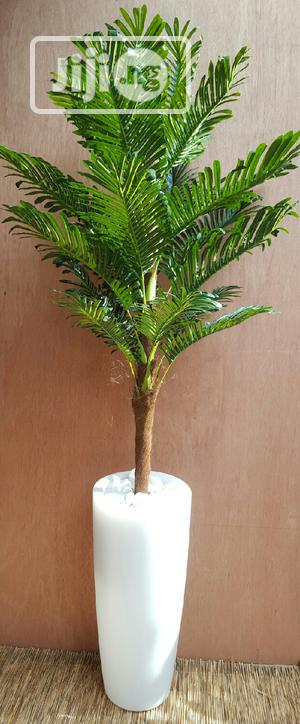 Artificial Palm   Garden for sale in Lagos State, Surulere