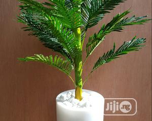Artificial Plant   Garden for sale in Lagos State, Surulere