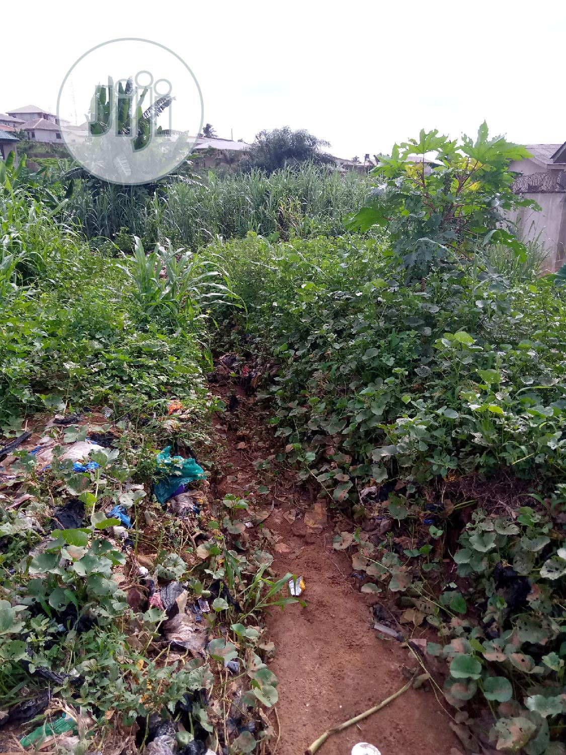 50 Ft X 100 Ft = 15 M X 30 M = 5000 Square Feet = 450 Square Meters. | Land & Plots For Sale for sale in Ifako-Ijaiye, Lagos State, Nigeria