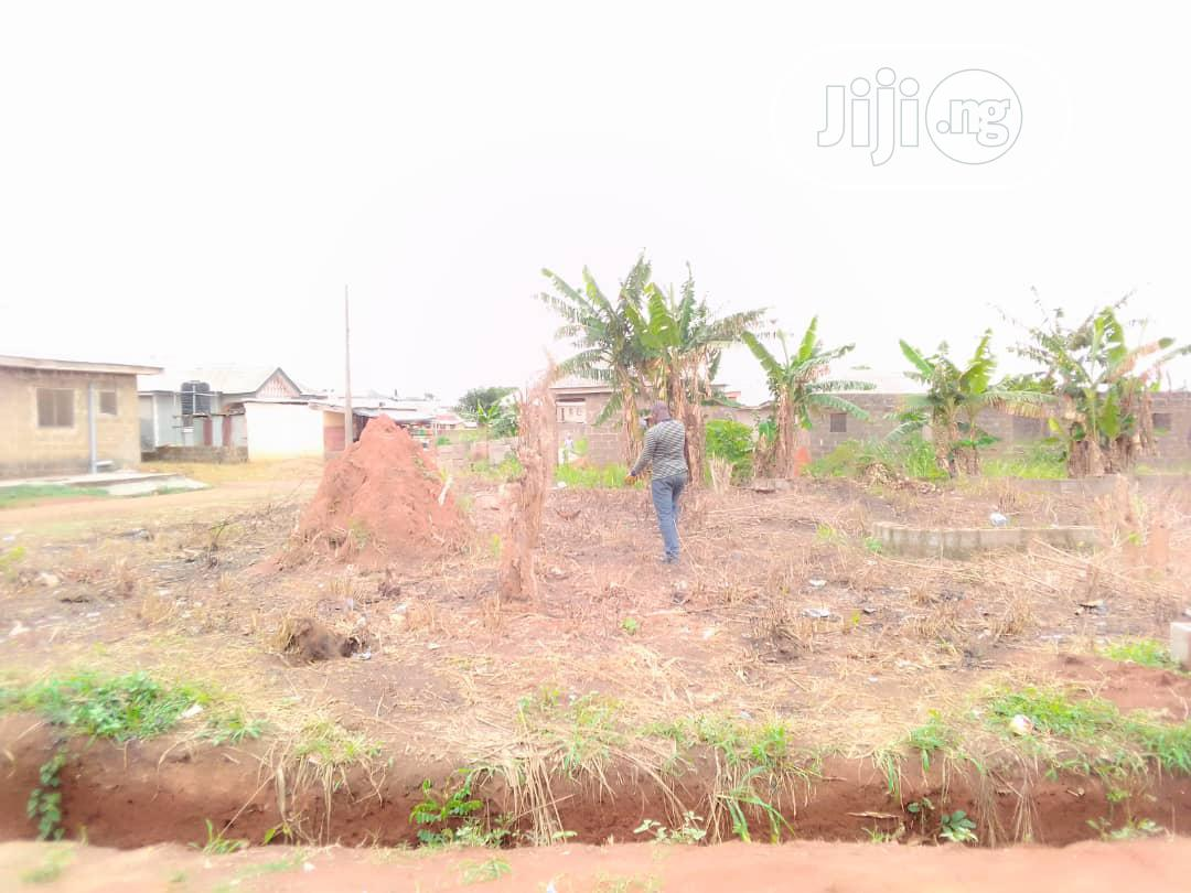 Quarter Plot Of Land 30 By 60 In A Very Decent Area At Itele