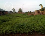A Plot of Land Available for Sale in Amoyo,Ifelodun LG,Kwara State | Land & Plots For Sale for sale in Kwara State, Ifelodun-Kwara
