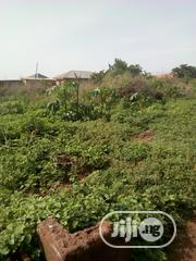 A Plot of Land Available for Sale in Amoyo | Land & Plots For Sale for sale in Kwara State, Ifelodun-Kwara