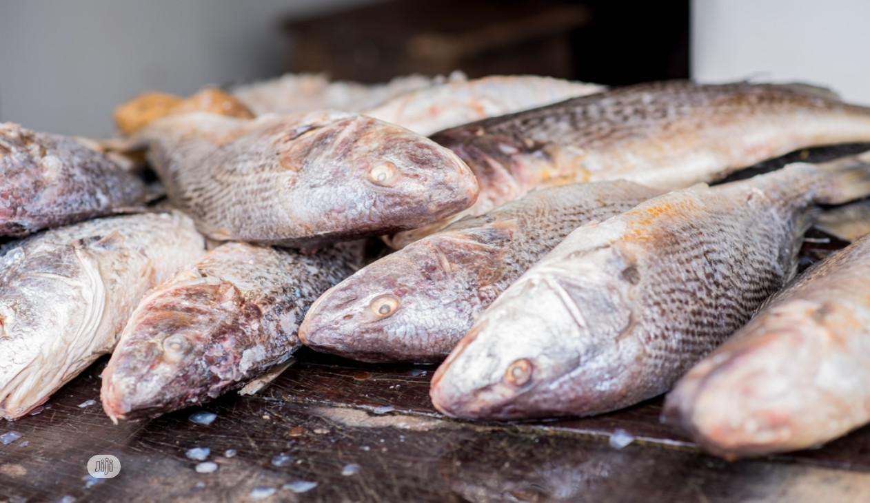 Frozen Croaker Fish | Meals & Drinks for sale in Victoria Island, Lagos State, Nigeria
