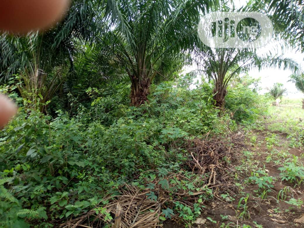 Agbara Land for Sale