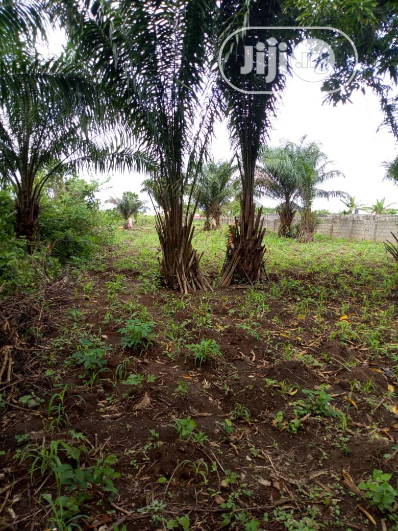 Agbara Land for Sale | Land & Plots For Sale for sale in Badagry, Lagos State, Nigeria