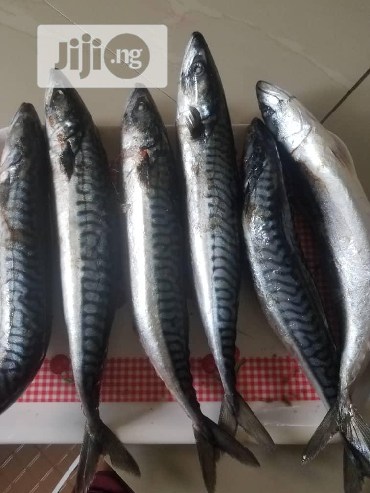 Fish Sharing
