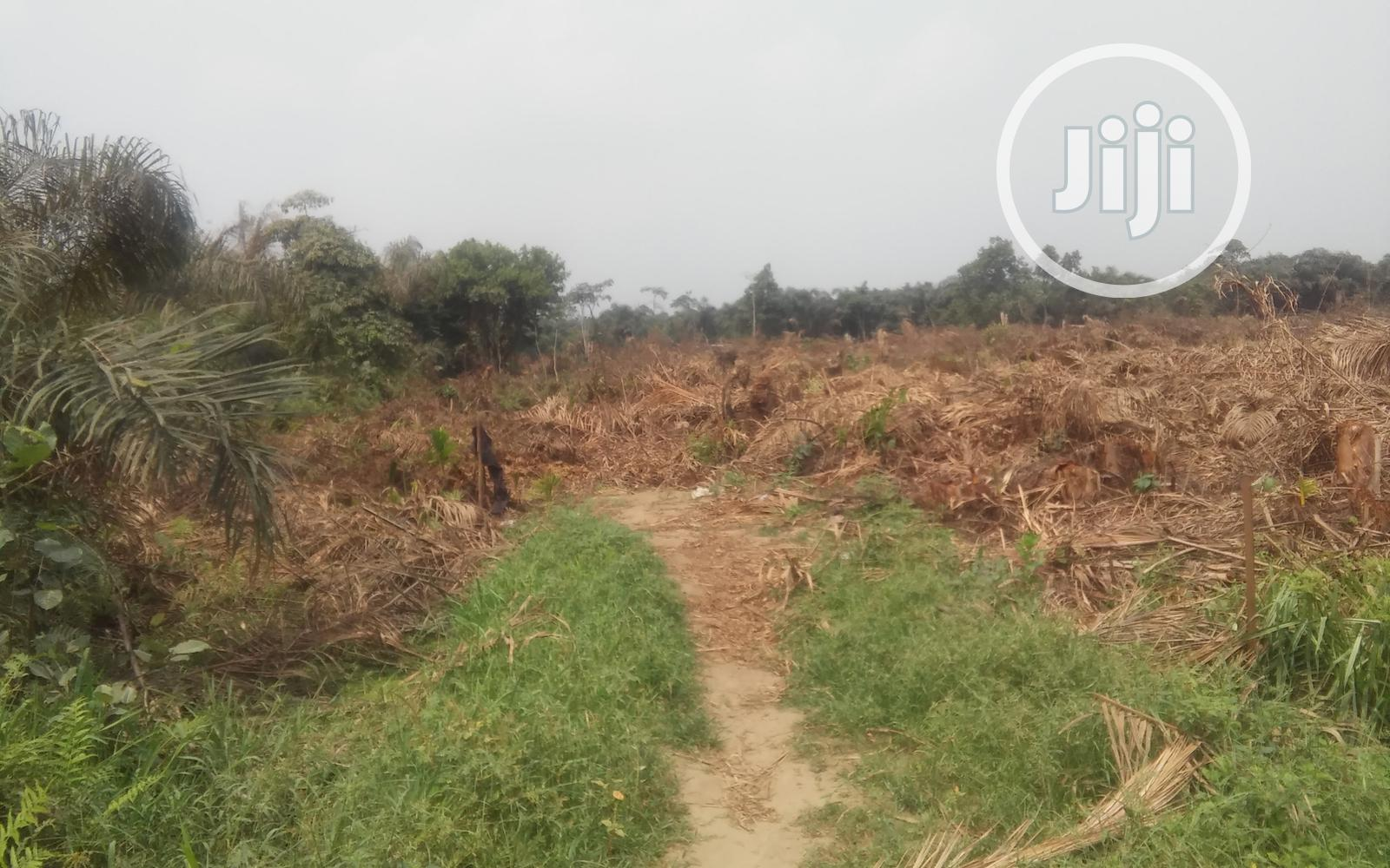 Plots of Land for Sale at Almond Gardens - Isashi | Land & Plots For Sale for sale in Ojo, Lagos State, Nigeria