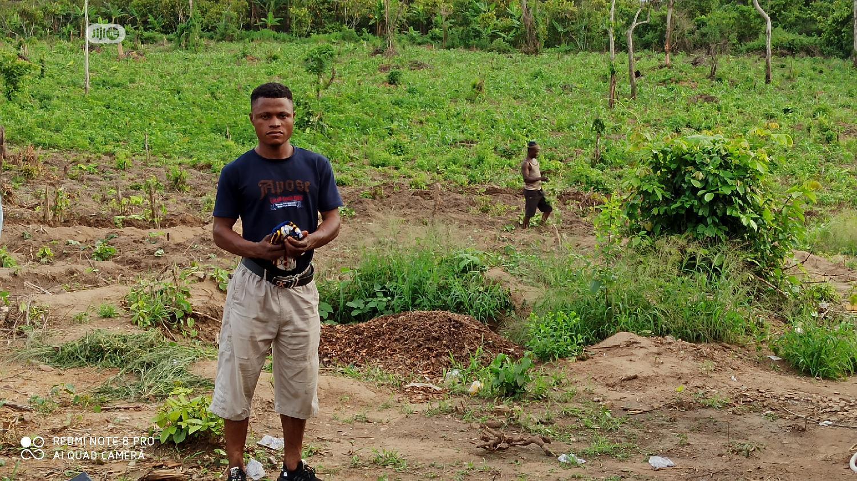 100 Acres Of Farmland At Ajebo