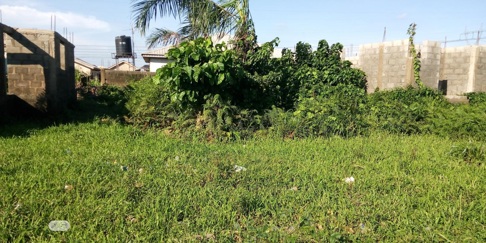 Empty Piece Of Land 30/80 At Toyin Davis | Land & Plots for Rent for sale in Isolo, Lagos State, Nigeria