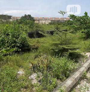 4 Plots of Land for Sale Along the Road in Ago Palace Way Okota Isolo | Land & Plots For Sale for sale in Lagos State, Isolo