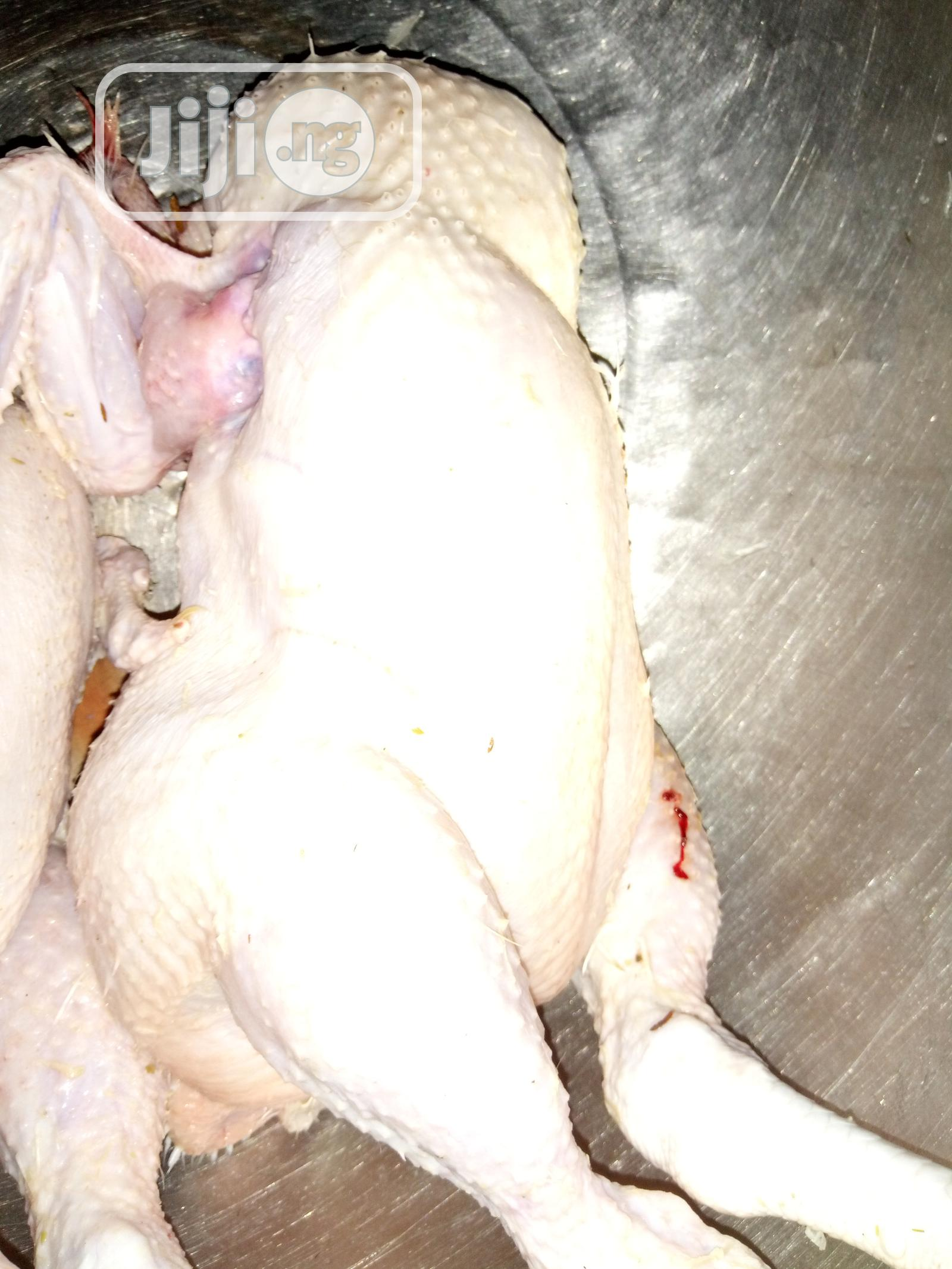 3kg Broilers Chickens   Livestock & Poultry for sale in Jikwoyi, Abuja (FCT) State, Nigeria