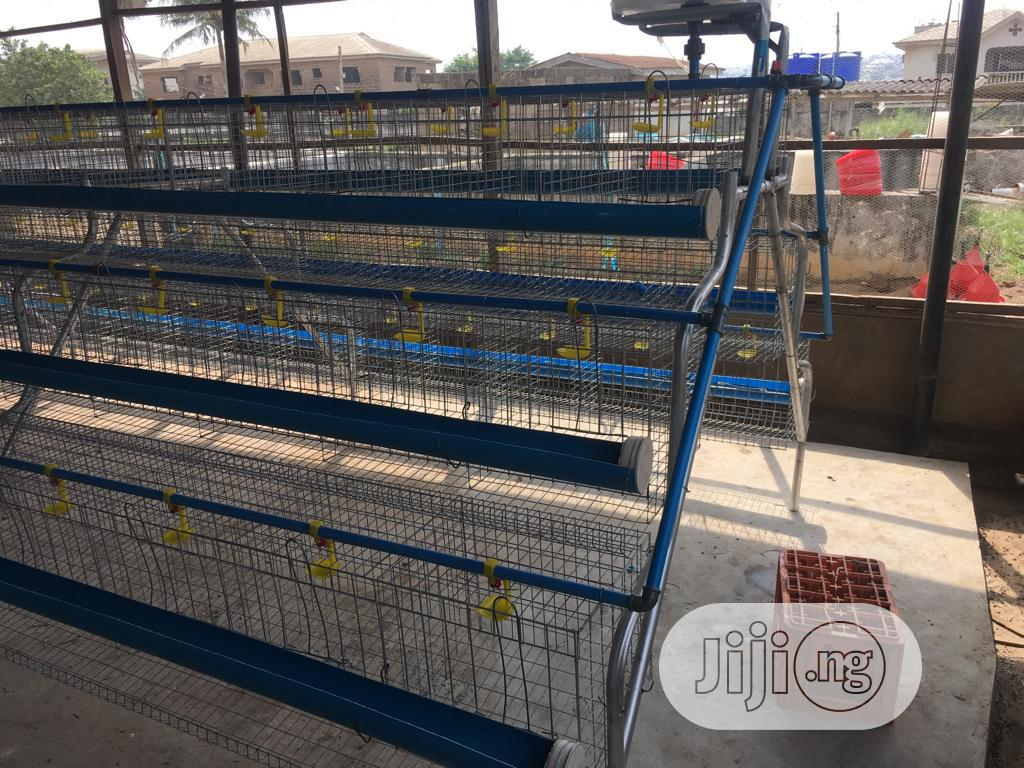 Galvanized Quality Battery Cage