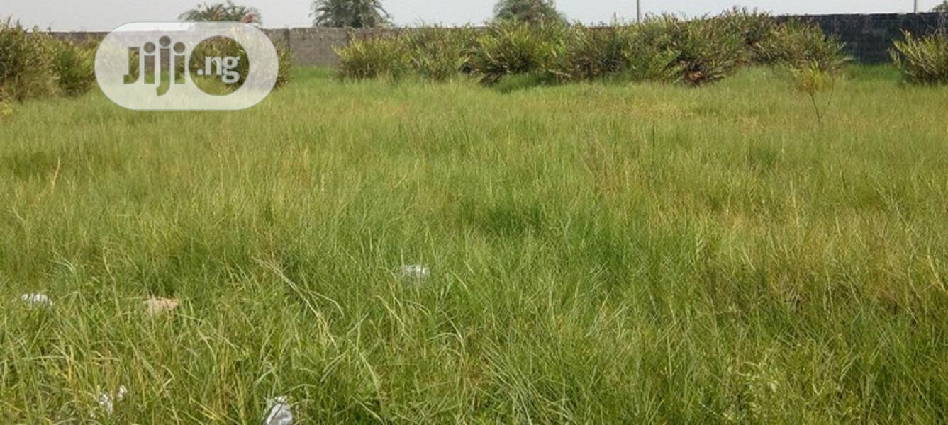 Archive: A Full Plot of Land Off Orchid Road ,Lekki