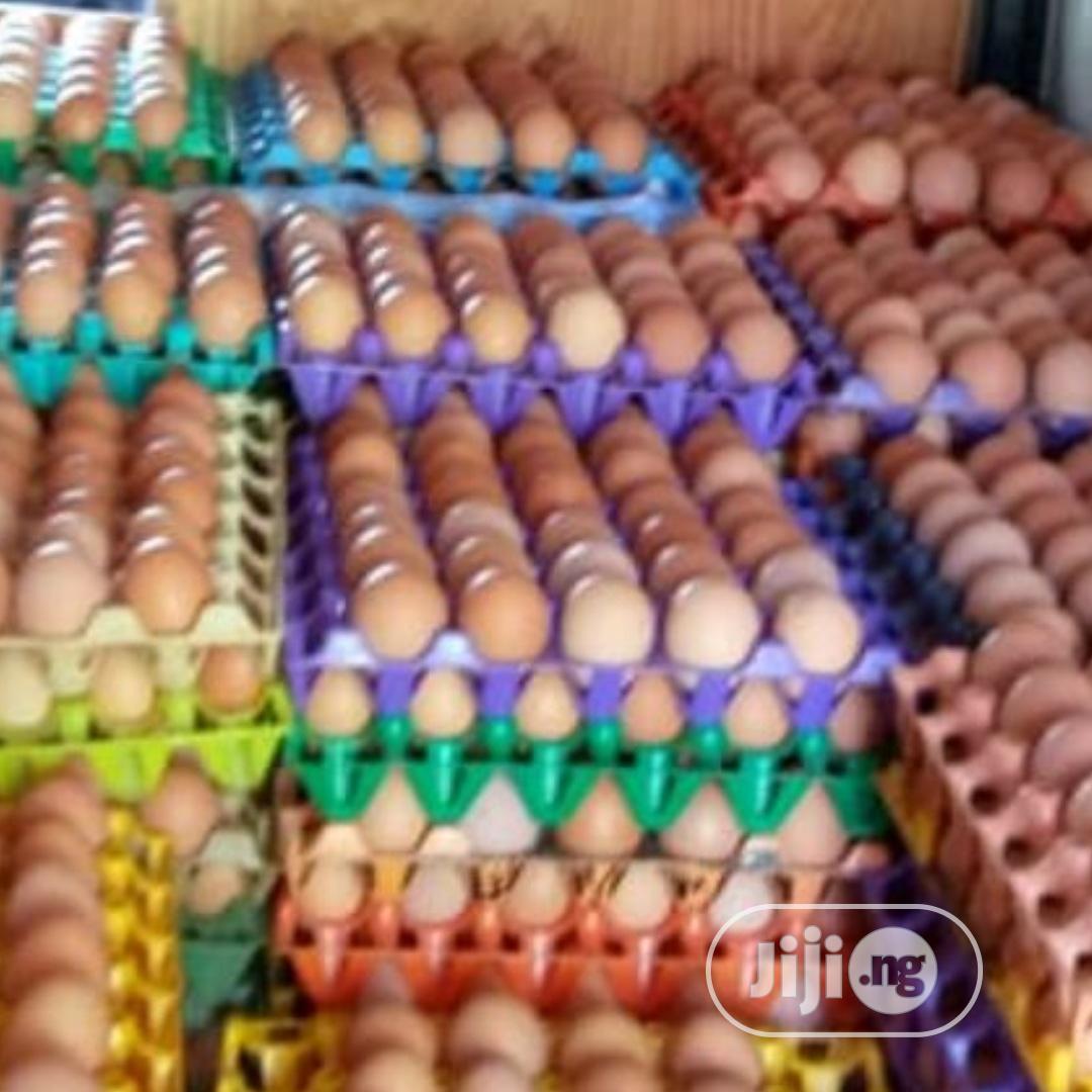 Fresh From The Farm Eggs