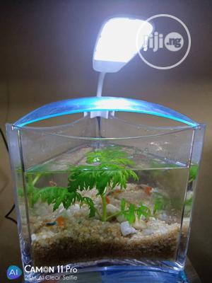 Mini Triangle Aquarium   Fish for sale in Lagos State, Ipaja