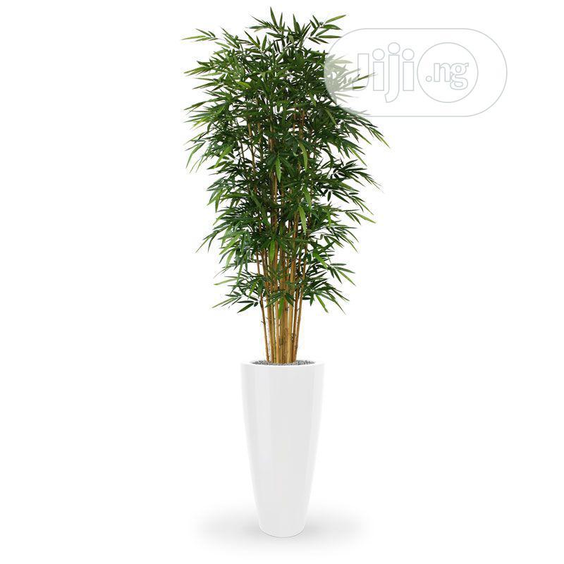 Ornamental Fake Plant