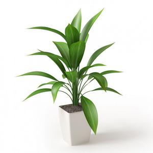 Grand Synthetic Plant | Garden for sale in Lagos State, Ikeja