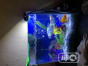Mini Aquarium Fish Tank   Fish for sale in Lagos State, Victoria Island