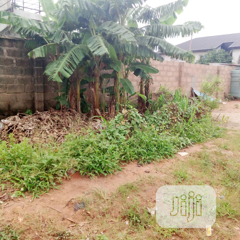 Half Plot Of Land At Mercy Land Estate Ipaja | Land & Plots for Rent for sale in Ipaja, Lagos State, Nigeria
