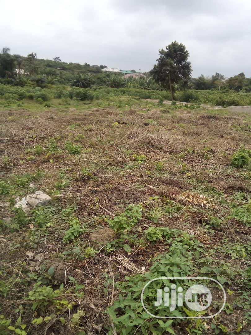 Affordable Lands Are Available For Sale In Ikorodu