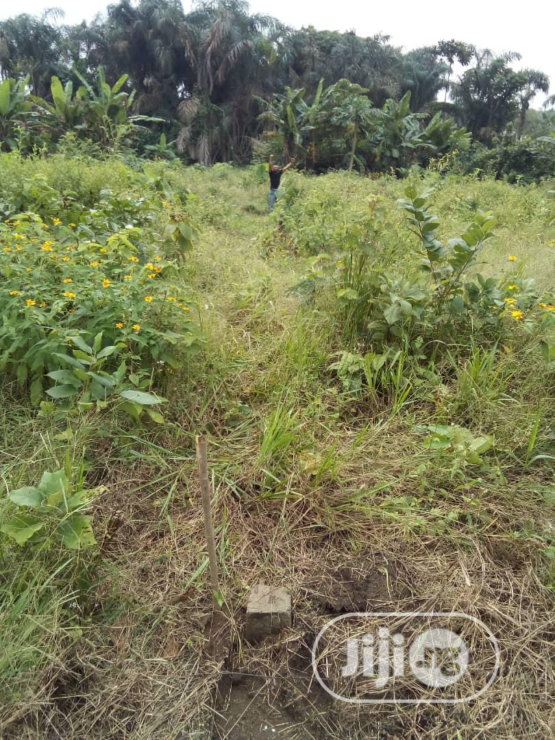 Affordable Lands Are Available For Sale In Ikorodu | Land & Plots for Rent for sale in Ikorodu, Lagos State, Nigeria