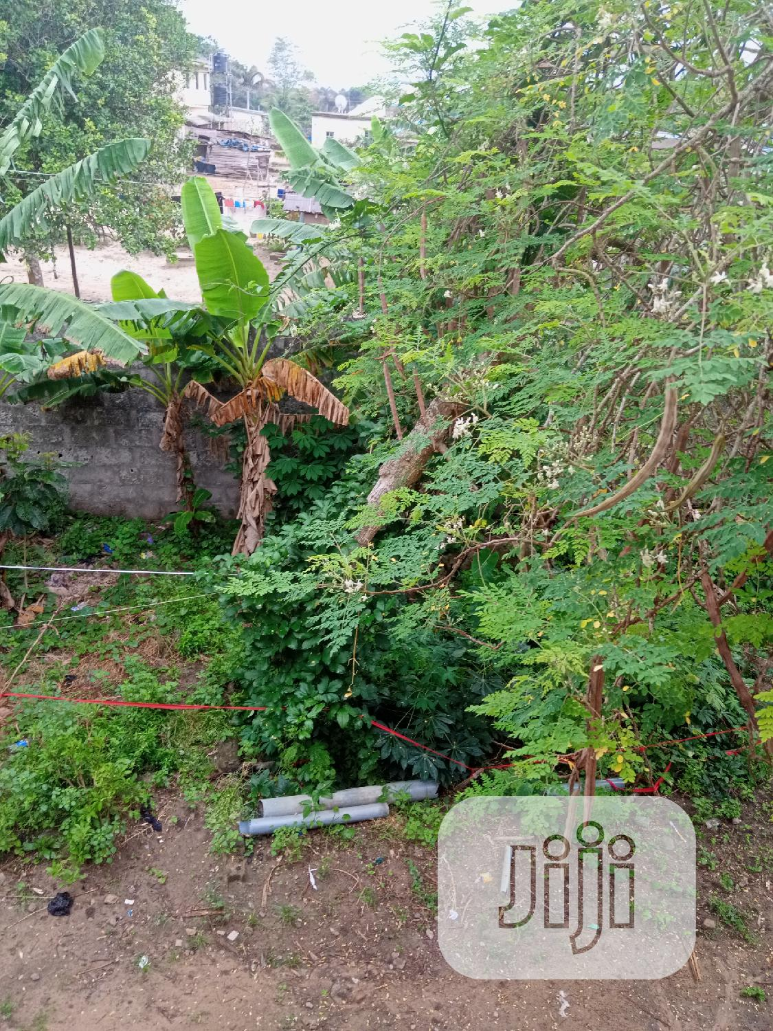 Archive: More Than Ten Plots Of Dry Land Available For Sale