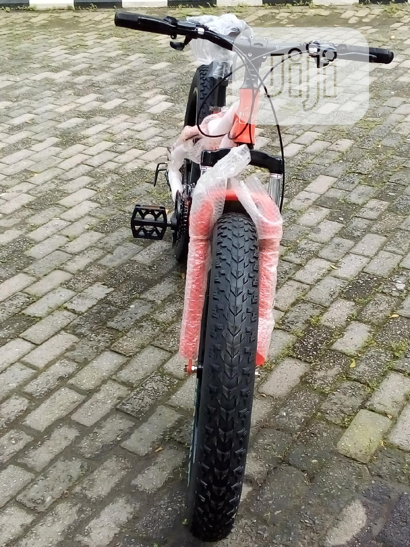 Archive: Deprince Bike