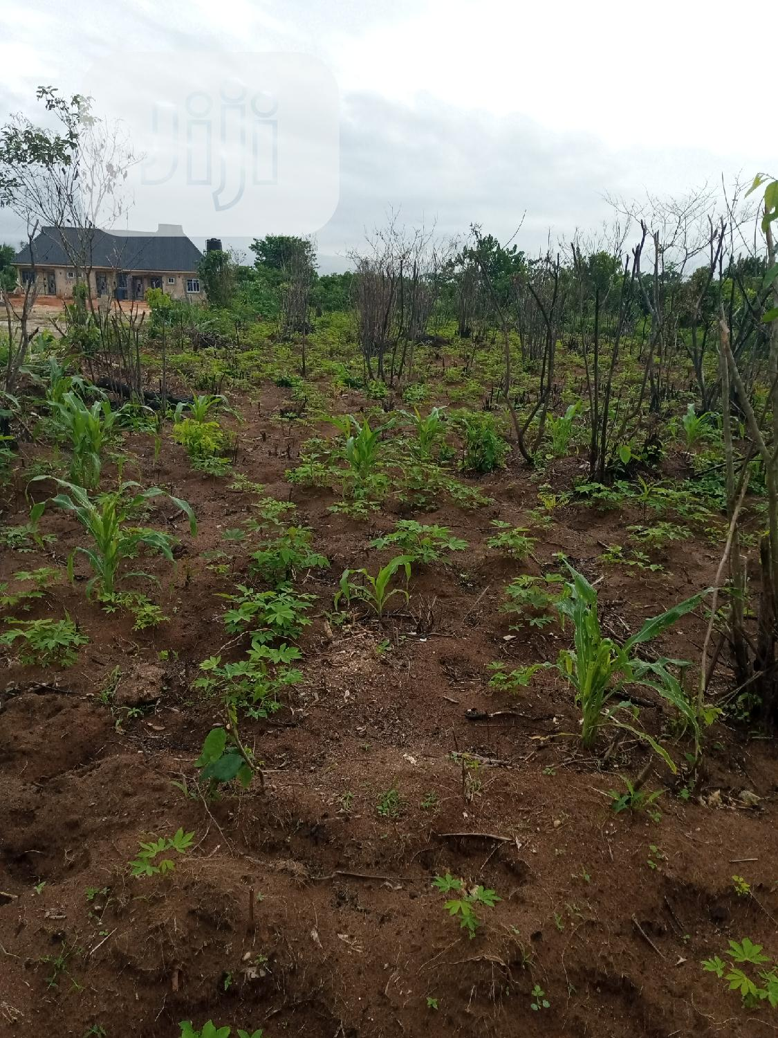 Commercial Land | Land & Plots for Rent for sale in Owerri, Imo State, Nigeria