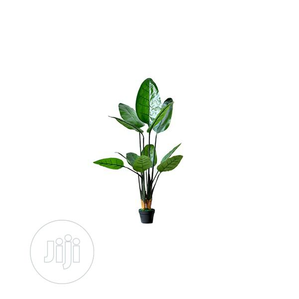 Synthetic Plants For Hotel Home Decor In Ikeja Garden Bethelmendels Artificial Grass Jiji Ng