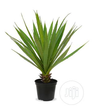 Interior Potted Fake Plant | Garden for sale in Lagos State, Ikeja