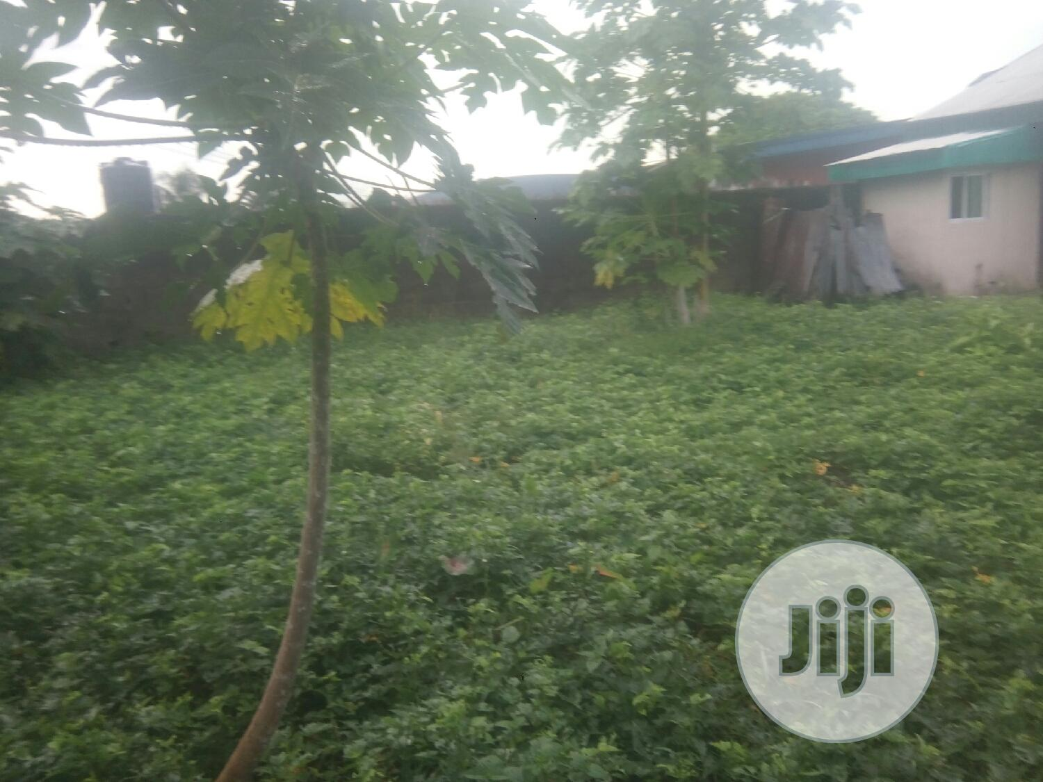Land For Lease At Etta-agbor | Land & Plots for Rent for sale in Calabar, Cross River State, Nigeria