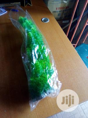 Aquarium Plants | Pet's Accessories for sale in Lagos State, Lekki