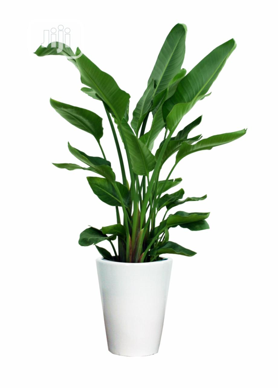Outdoor Artificial Potted Plant