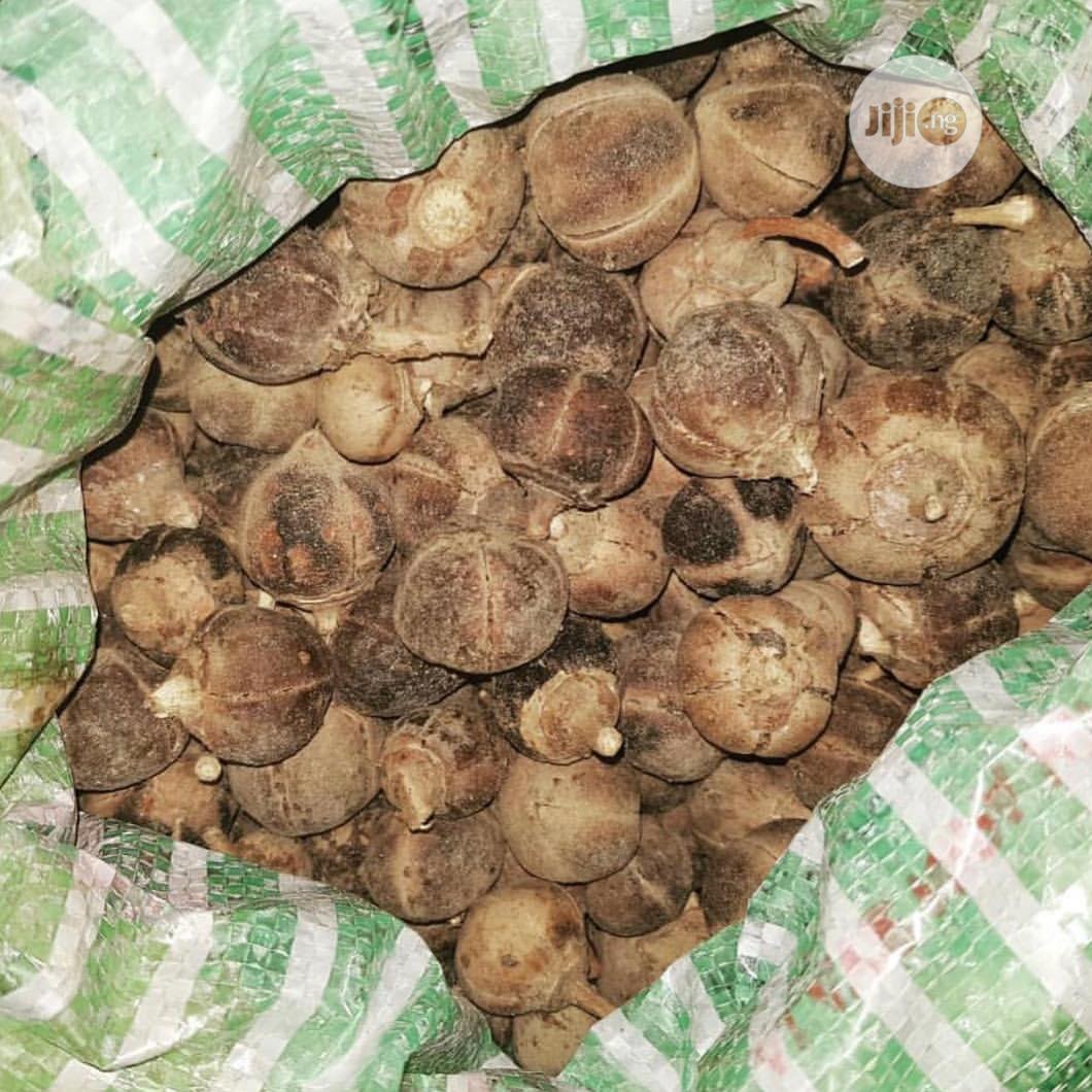 Iykonherb Goron Tula Fruit.