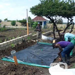 Free Biogas Digester System For Farms,Estates & Homes